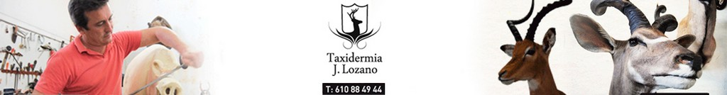 Taxidermia Lozano