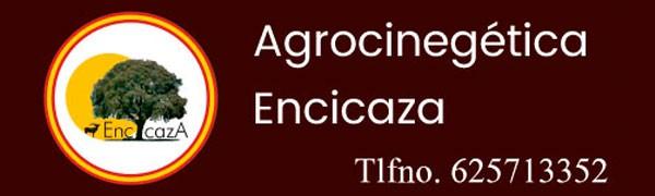 Encicaza