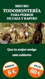 TM perros caza