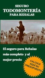 TM Rehalas