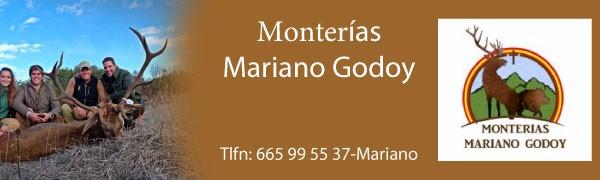 M. Godoy