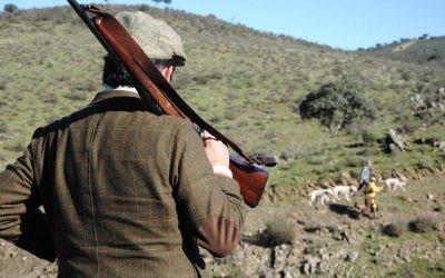 Munición para rifles EG Delsur, la marca española.
