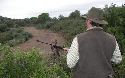 La RFEC pide explicaciones al Gobierno por los datos de fallecidos en caza