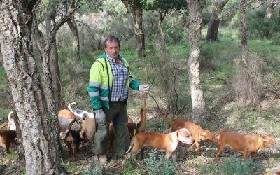La A.E.R. cataloga el reglamento de caza castellano manchego de manifiestamente mejorable
